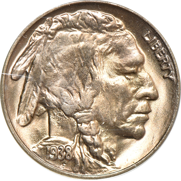 Nine Buffalo nickels, as described
